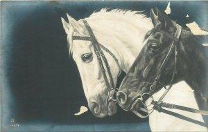 Horses old photo postcard