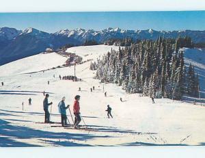 Pre-1980 Skiing HURRICANE RIDGE NATIONAL PARK Olympia WA ho8219