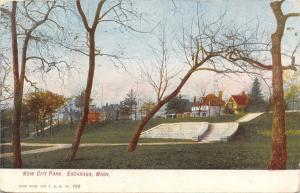 Escanaba Michigan~New City Park~Steps Up to Houses on Street~1907 Postcard