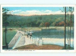 W-border PARK Allegany State Park - Salamanca & Limestone & Red House NY AF7420