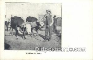 Breaking the Cows  Postcard Post Cards Old Vintage Antique Postcard, Post Car...