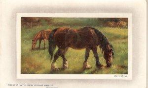 HarryPayne. Horses psturing Tuck Gem Oilette PC # 9757
