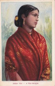India Tea Picker India Tea Growers Postcard 1911