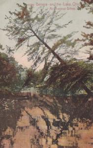 Ohio Geneva-On-The-Lake Scene At Chestnut Grove 1908