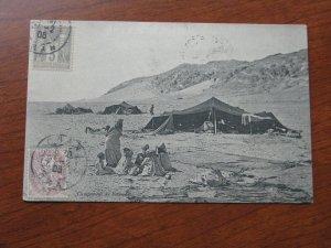 Algeria Postcard 1906 Postmark Desert Nomads Tents