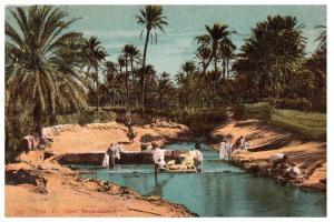 1930 Algeria Oasis Un Oued Dans l'Oasis C10