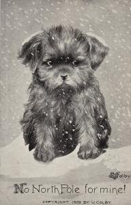 North Pole Exploration Dog Comic,No North Pole for Mine! , 00-10s