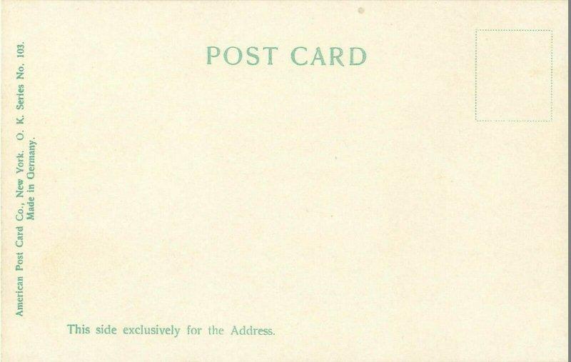 Old Post Office & Clock Tower (Now Nancy Hawks) Washington DC  Pre-1907 Postcard