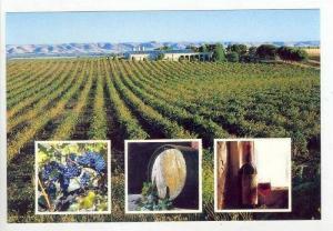 McLaren Vale, Australia wine producing area, 60-70s