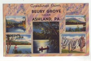 P913 1949 multiview fishing etc views beury grove near ashland penn