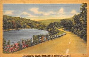Herminie PA Follow Curve Left, After Pond On Wineland Drive~Greetings~Linen 1949