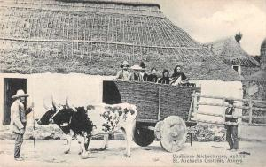 Azores Acores Portugal St Michaels Customs Bull Cart Antique Postcard J79996