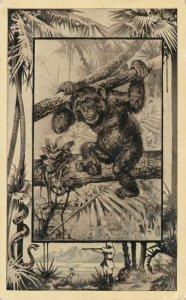 Africa Safari 1909 Series by Mintz of Chicago - Chimpanzee - DB