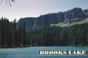 Wyoming Brooks Lake