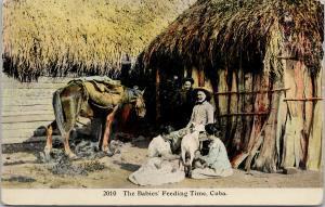 Cuba The Babies Feeding Time Child Goat Family UNUSED Postcard E51