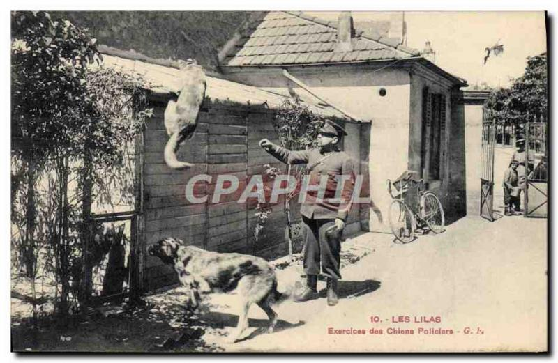 VINTAGE POSTCARD the Lilacs Exercises of the tracker dogs Ch