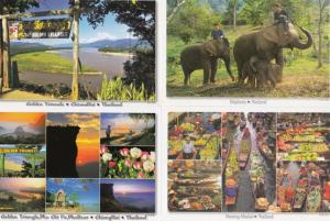 Golden Triangle Hanging Sign Elephants Floating Market 4x Thailand Postcard s