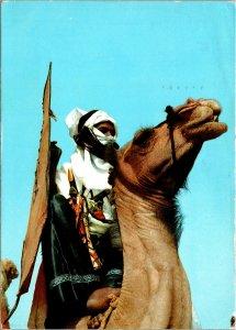 Tuaregs at Kano Northern Nigeria Postcard used 1960s