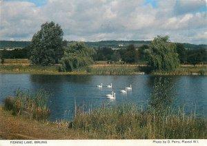 Postcard Canada fishing lake Birling Saskatchewan swans image picturesque view