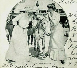 A Wireless Telephone Comic Two Women Talking Mule Ears Vintage c1905 Postcard