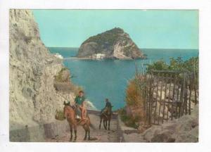 Sant´Angelo D´Ischia, Italy , 50-60s, Boys riding donkeys