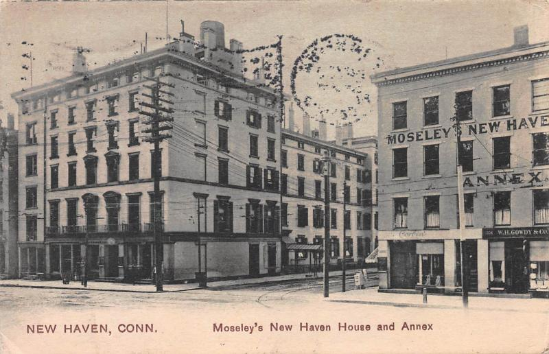 Moseley's New Haven House and Annex, New Haven, CT, Early Postcard, Used in 1910