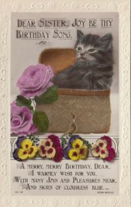 RP: Cat Birthday Greetings , 1900-10s