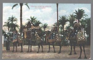 099064 EGYPT Camels carrying Arabian marriages Vintage PC