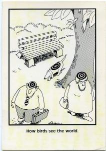 How Birds See the World Humor - Cartoon - pm 1986