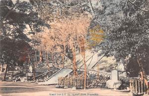 Japan Old Vintage Antique Post Card Grant tree & C Suwall Park Nagasaki Writi...
