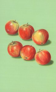 Bunch Of Apples Fruit Childrens Old Ladybird Book Postcard
