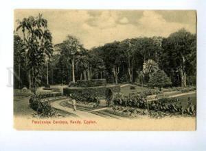 133019 CEYLON KANDY Peradeniya Gardens Vintage PC