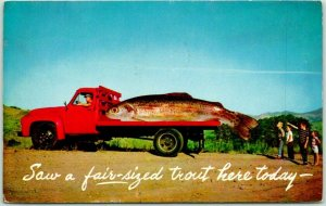 1958 Fishing EXAGGERATION Postcard Giant Fish on Truck Bed A Fair-Sized Trout