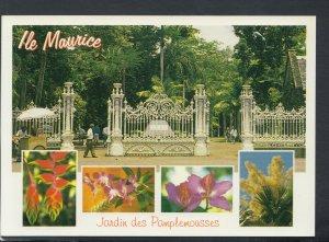 Mauritius Postcard - Pamplemousses Botanical Gardens   T9399