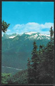 Washington, Olympia National Park, Mt. Olympus, unused