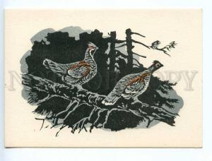 238752 RUSSIA HUNT Zakharov grouse old engraving postcard