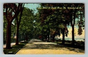 Wilkesbarre PA-Pennsylvania Elm Trees On South River, Vintage c1910 Postcard