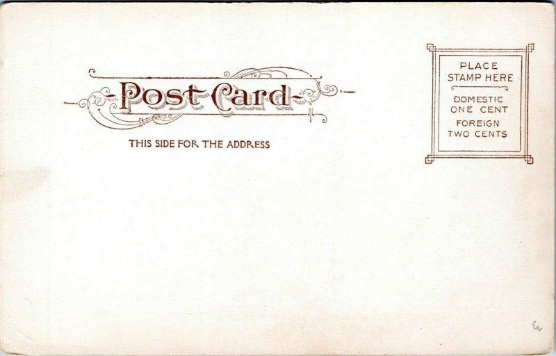 1905 Washington Bowling Green Buildings Souvenir Card 6046 NYC Postcard