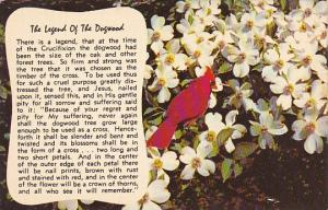 The Legend Of The Dogwood Tree