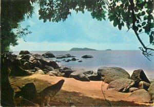 French Guinea Cayenne postcard