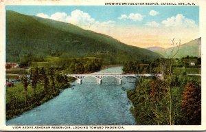 New York Catskill Mountains Showing Bridge Over Esopus 1923