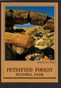 AZ  Petrified Forest National Park Arizona Postcard Logs