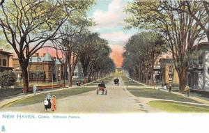 New Haven Connecticut~Hillhouse Avenue~Horse Carriages~Kids in Street~1905 TUCK