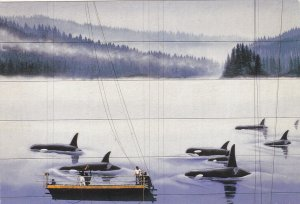 Orca Whaling Wall painting, Melville St. at Bute, VANCOUVER, Kodak, Expo, 1986