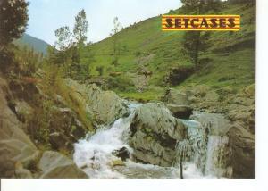 Postal 031108 : Setcases (Girona). Pirineu Catala. Riera de Vall-llobre