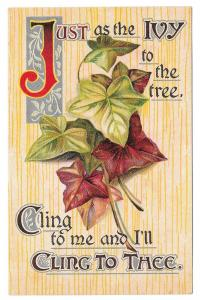 Motto Poem Postcard Just as the Ivy to the Tree Cling to Me