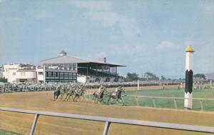 CHARLESTOWN, West Virginia, 1940-1960's; Charles Town Race Track