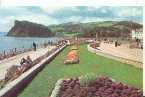 Devon Postcard - The New Promenade Gardens - Teignmouth - Ref 12141A