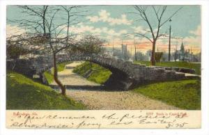 Scene In Capitol Park, Birmingham, Alabama, PU-1909