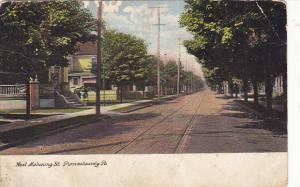 Pennsylvania Punxsutawney West Mahoning Street 1908